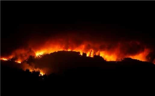 28718622 2017 06 18T024633Z 658307522 RC1686594750 RTRMADP 3 PORTUGAL FIRE.limghandler 515x322
