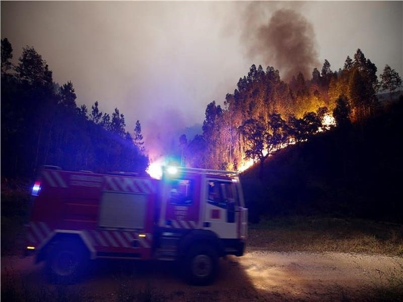 28718928 2017 06 18T062756Z 768060061 RC1F90390F80 RTRMADP 3 PORTUGAL FIRE.limghandler