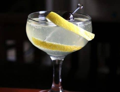 Gin Fizz 488x375