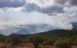 Αμείωτη μάχη με τις φλόγες στη Λευκίμμη Έβρου- Νέα πυρκαγιά στο Διδυμότειχο