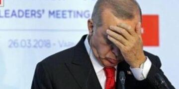 Erdogan Lira 360x180