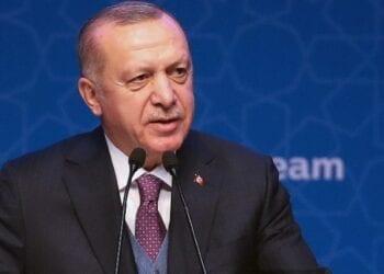 Erdogan 1 350x250