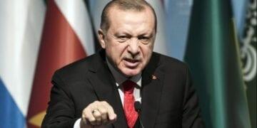 Erdogan 360x180